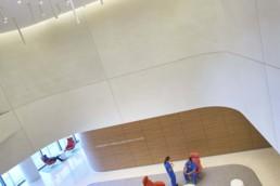 UC San Diego, Jacobs Medical Center, Mehrdad Yazdani, Yazdani Studio