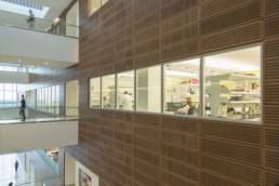 GVI, Gates Vascular Institute, Mehrdad Yazdani, Yazdani Studio